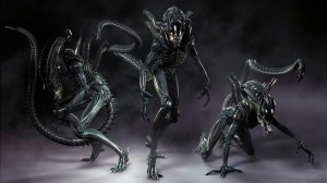 1024px-Xenomorph_alien_aliens_desktop_1920x1080_hd-wallpaper-862277 (2)