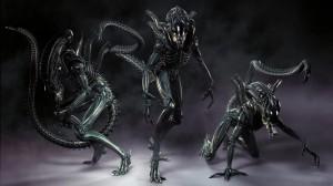 1024px-Xenomorph_alien_aliens_desktop_1920x1080_hd-wallpaper-862277 (2)
